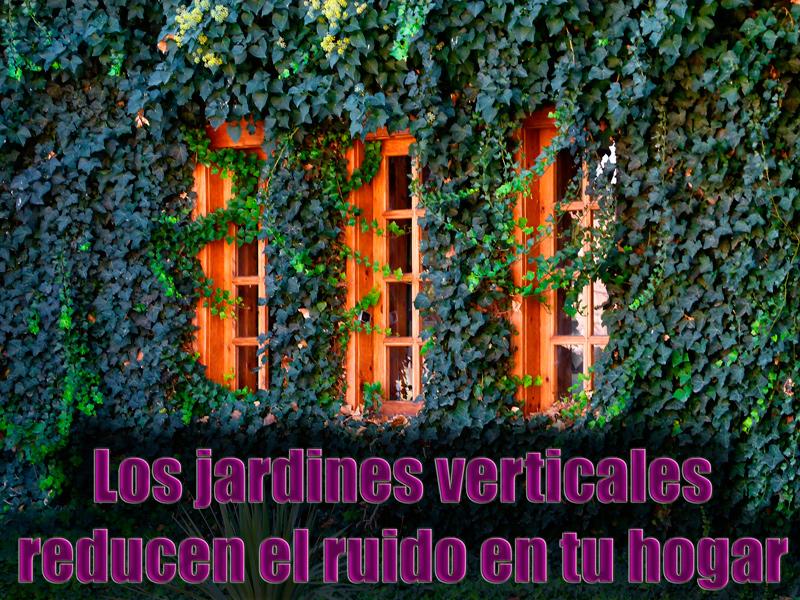 Un jard n vertical casero para tu hogar casas ecol gicas for Jardin vertical interior casero