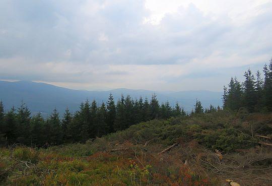 Widok na zachód z Cyla Hali Śmietanowej.