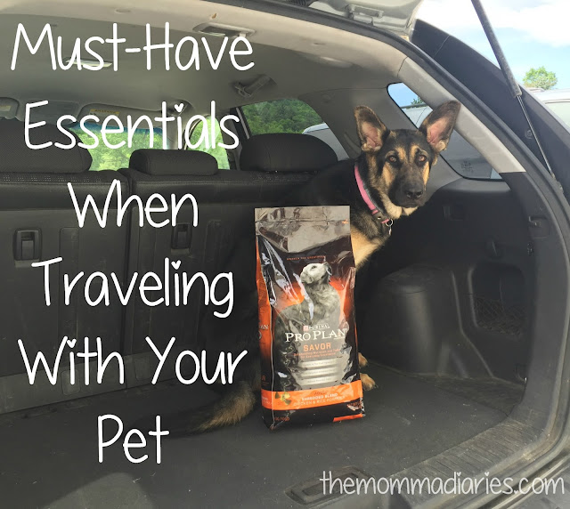 Travel Essentials for Pets, must-have essentials when traveling with your pets