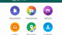 Sostituire le Email con Whatsapp per inviare PDF e documenti