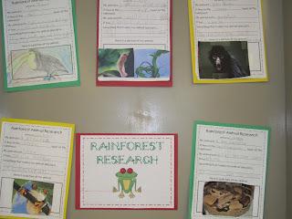Rainforest Research - First Grade Roars!