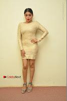 Actress Pooja Roshan Stills in Golden Short Dress at Box Movie Audio Launch  0124.JPG