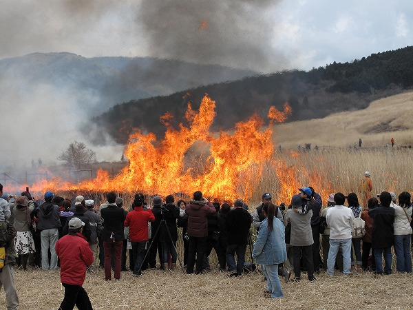 Sengokuhara Susuki Burning Ritual, Hakone Town, Kanagawa Pref.
