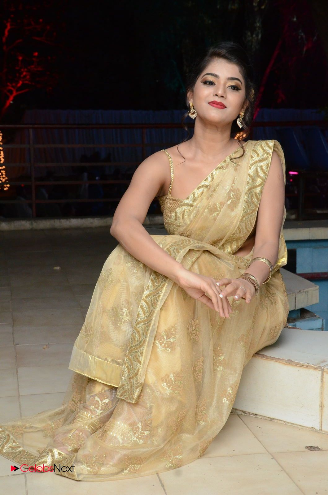 Actress Yamini Bhasker Pictures in Saree at anic Movie Audio Launch  0094.JPG