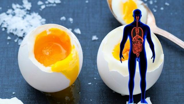 Güne Yumurta Yiyerek Başlamanın Faydaları