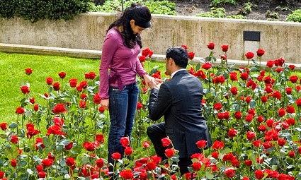 propose day photos