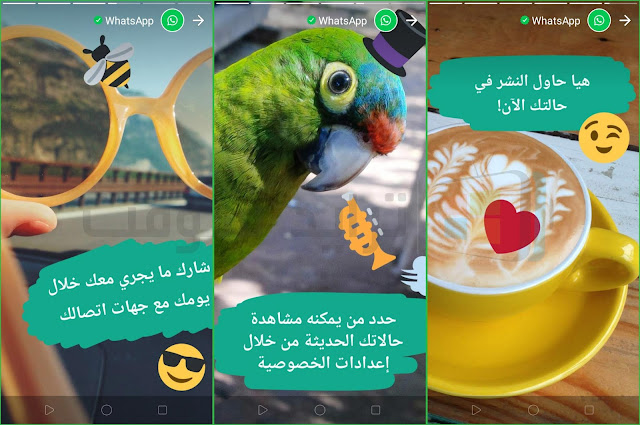 تنزيل WhatsApp Apk