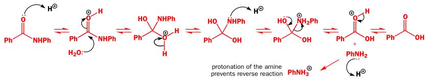 Chemistry: Hydrolysing amides
