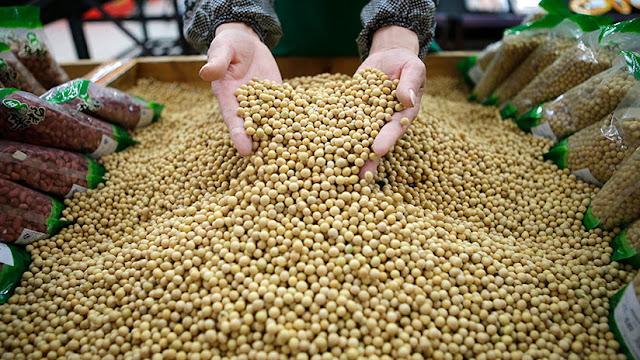 China eliminará los aranceles a la soja importada de la India, Corea del Sur y Sri Lanka