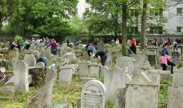 Voluntarios que trabajan en el cementerio judío Waehringer de Viena el 1 de noviembre de 2016. [Tina Walzer]