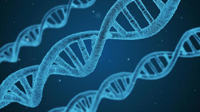 """Dos españoles crean una aplicación para utilizar el ADN como """"disco duro"""""""