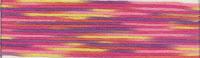 мулине Cosmo Seasons 9020, карта цветов мулине Cosmo