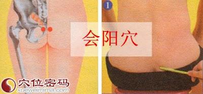 會陽穴位 | 會陽穴痛位置 - 穴道按摩經絡圖解 | Source:xueweitu.iiyun.com