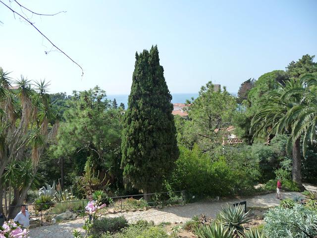 Вботаническом саду «Маримуртра»