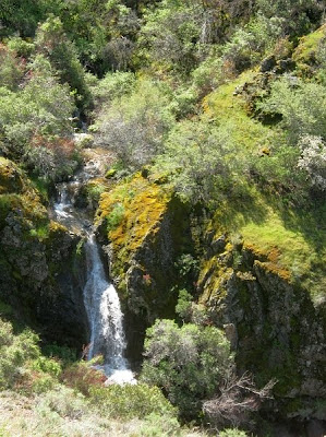 Mount Diablo State Park, Donner Canyon Waterfalls