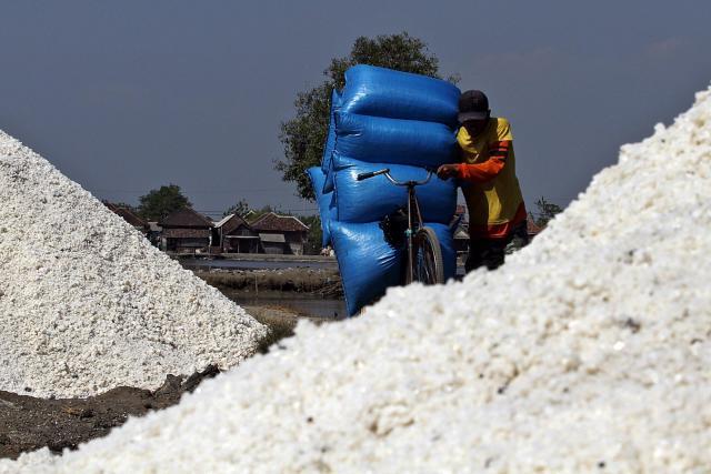 Percontohan Produksi Garam