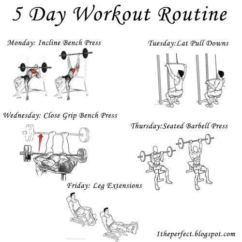 What Workout Routine Should Follow Or Be The Next After I Am Now