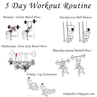 1 you can lose weight 5 day workout routine