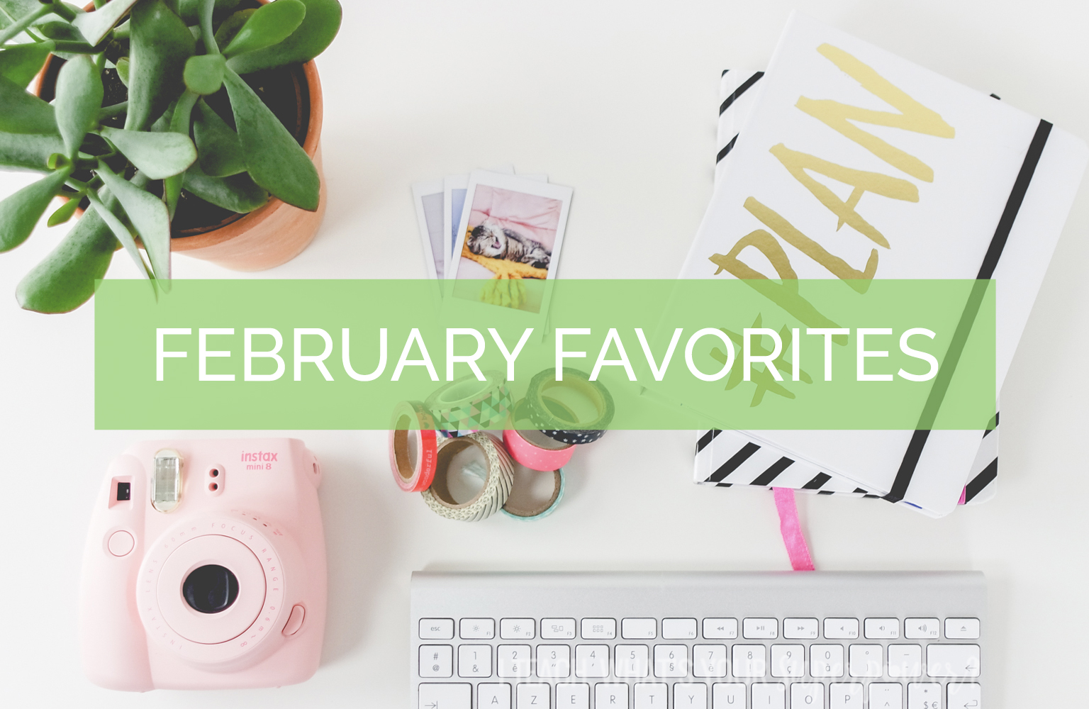 It's time for February favorites! Read about my InstaAmazing new kitchen tool, my latest bad habit, and more!