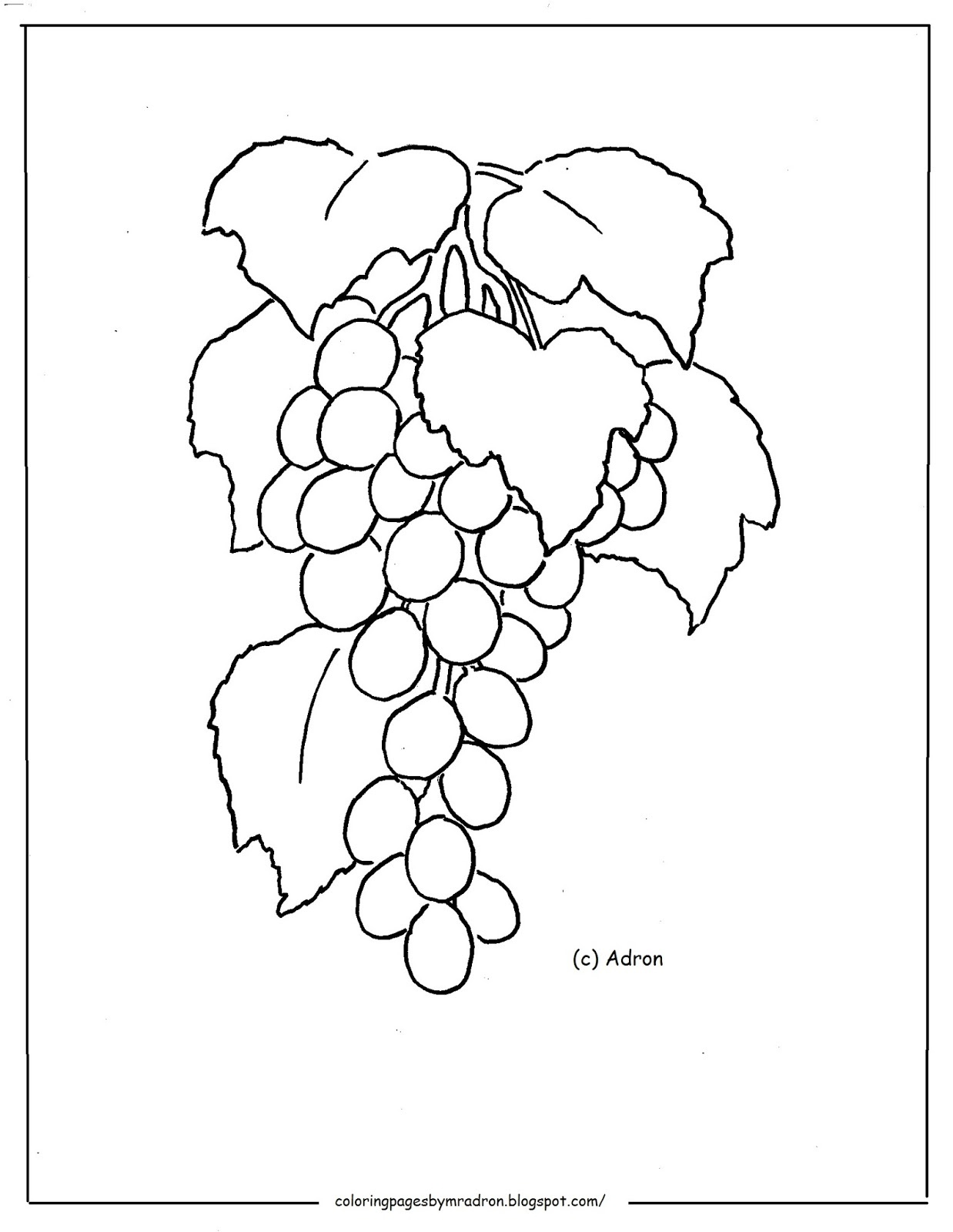 Printable Coloring Page Of Grapes On Vine