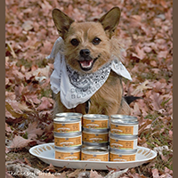 Merrick Thanksgiving Day Dinner Dog Food review