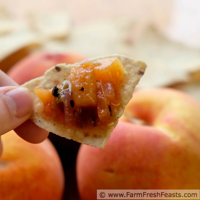 a close up shot of peach salsa on a tortilla chip