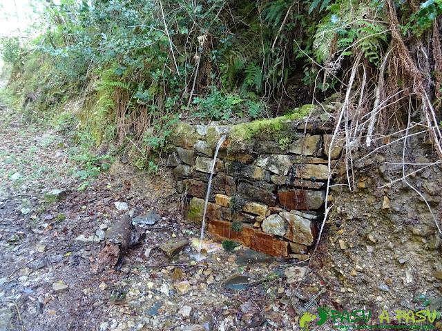 Fuente de Braña la Pasada, en Cangas del Narcea