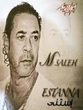 Medhat Saleh-Estanna