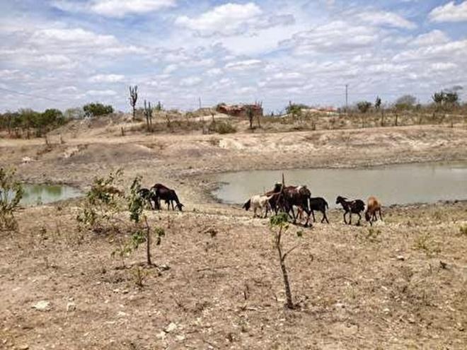"""Irecê: Com seca, cidade """"afunda"""" com excesso de poços perfurados"""