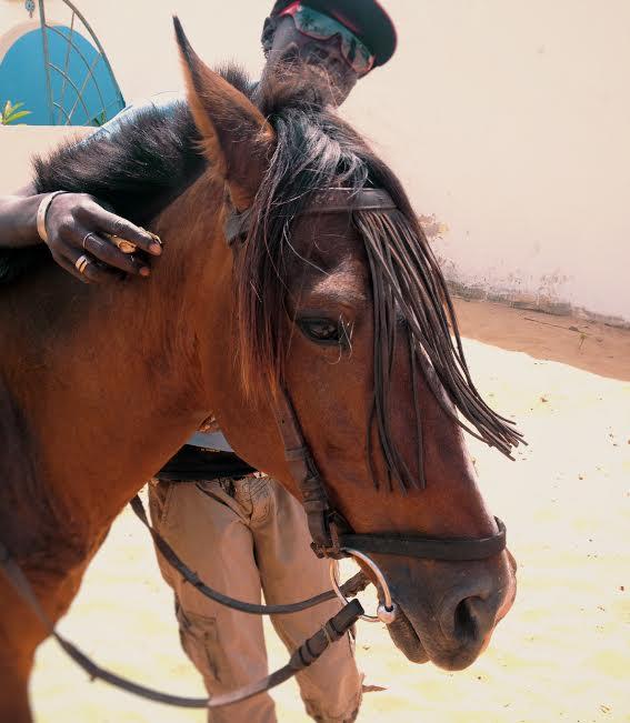 Vapaa dating sites Gambiassa