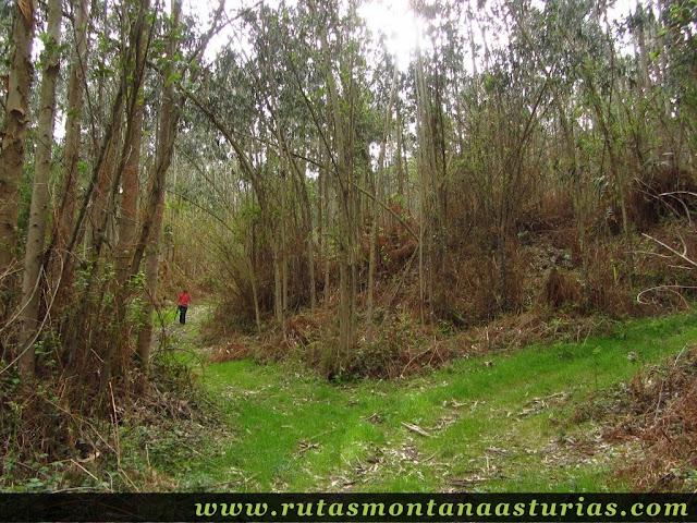 Cruce de pistas en el Pico Prieto