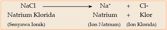 Contoh senyawa ionik pada garam dapur