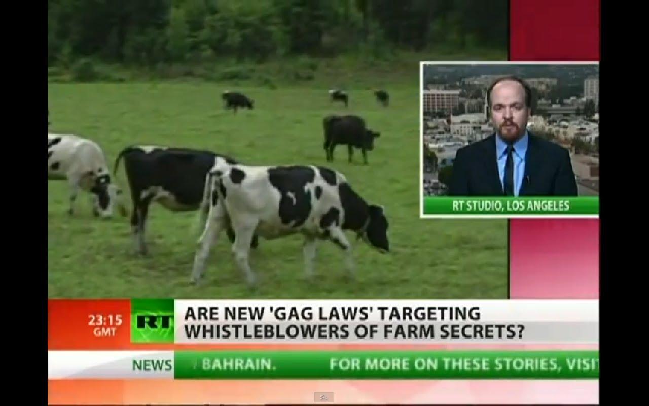 光明會 錫安長老會 聖羅馬帝國和NWO 及森遜密碼驗證: 加州牛確認瘋牛癥 美再現瘋牛癥全球恐慌
