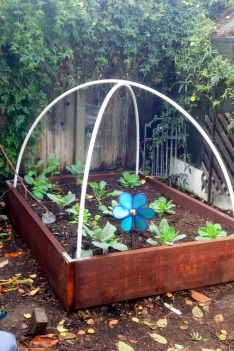 Do it yourself ideas and projects: 12 DIY Greenhouses for ...
