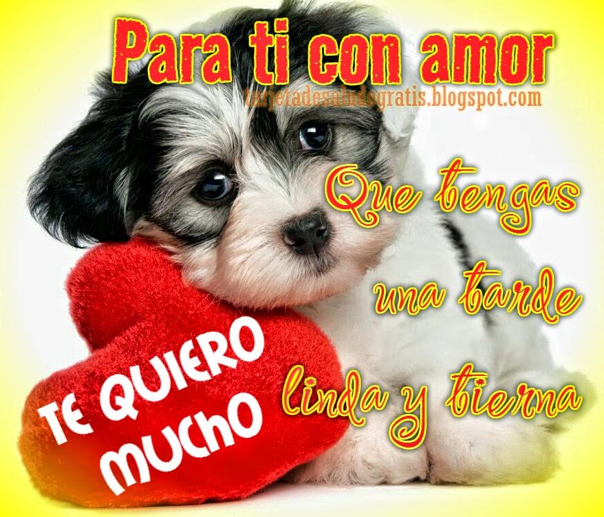 Imagenes De Buenas Tardes Frases De Amor De Buenas Tardes Mensajes