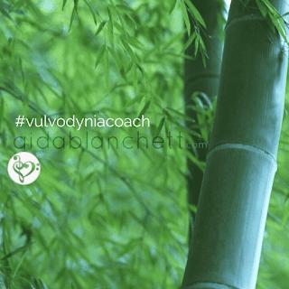 l'emozione lascia un messaggio che abbiamo bisogno di conoscere e può fluire via, libera, come il vento attraversò il corpo cavo del bambù. Lascia fluire l'emozione, è lì per aiutare, non per ferire! E' la sua natura: fluire. Lasciala scorrere. Elena Tione Healthy Life Coach