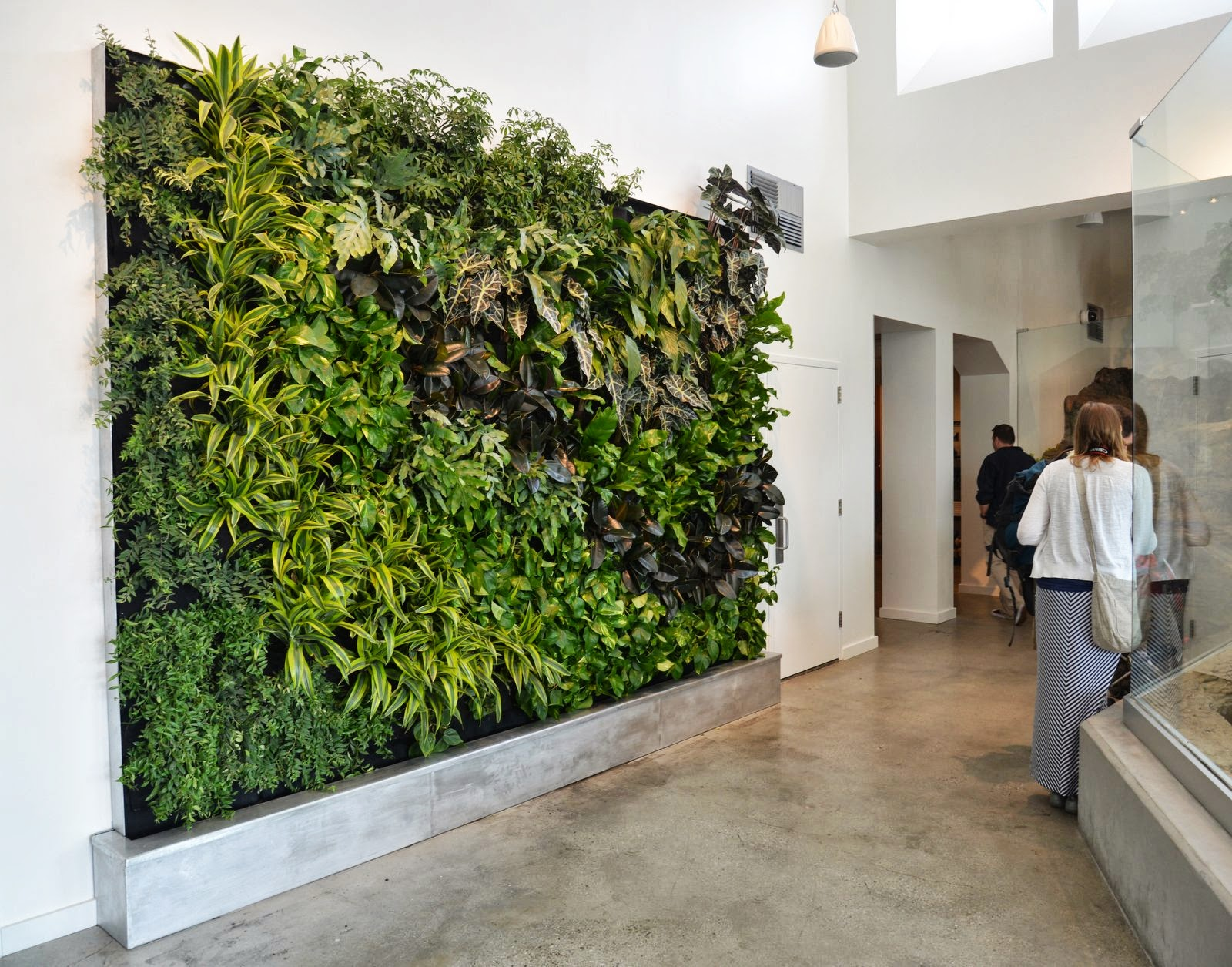 Plants on walls vertical garden systems Green walls vertical planting systems
