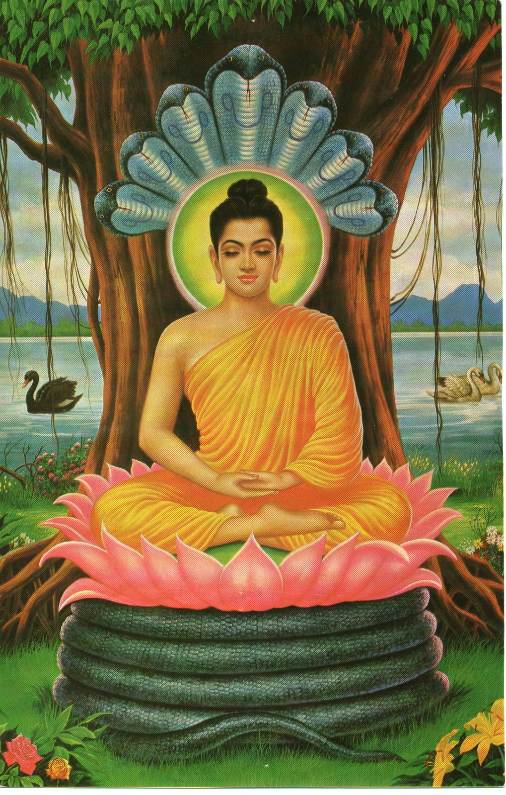 Buddhism in the Modern Society