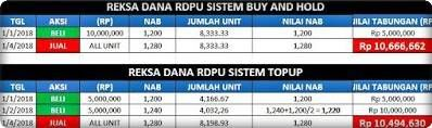 RDPU Buy and Hold Investasi Reksa Dana