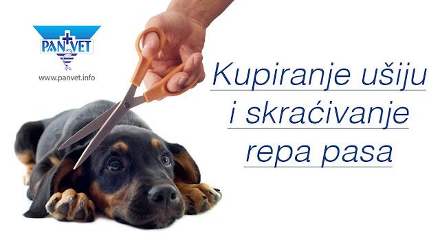 Kupiranje ušiju i skraćivanje repa pasa