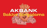 AkBank Bakiye Sorgulama ve Detayları