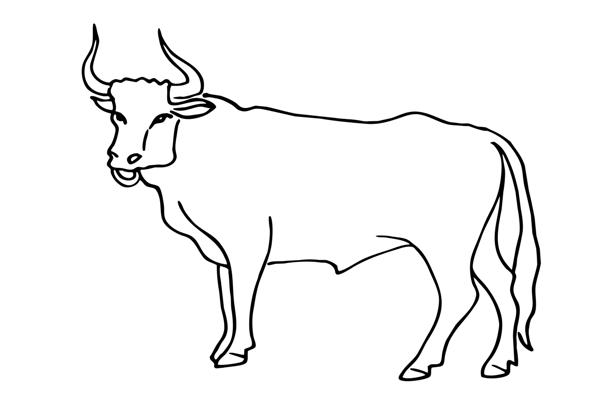 рожденный в год быка под знаком зодиака рак