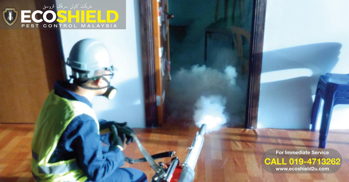 Fogging Nyamuk Zika Aedes Batu Caves Selangor