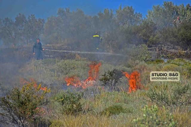Αργολίδα: Πυρκαγιά σε ρέμα προς τον Αμαριανό