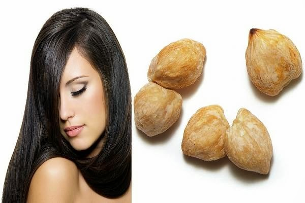 Manfaat Kemiri untuk Rambut dan Kesehatan