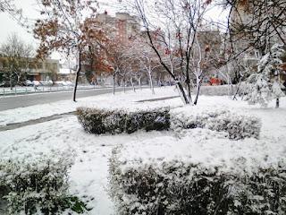 Spring, Snow, Yambol,