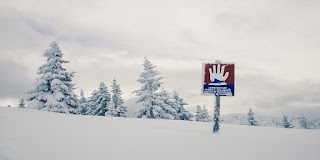 栃木のスキー場 雪崩事故で高校生7人死亡