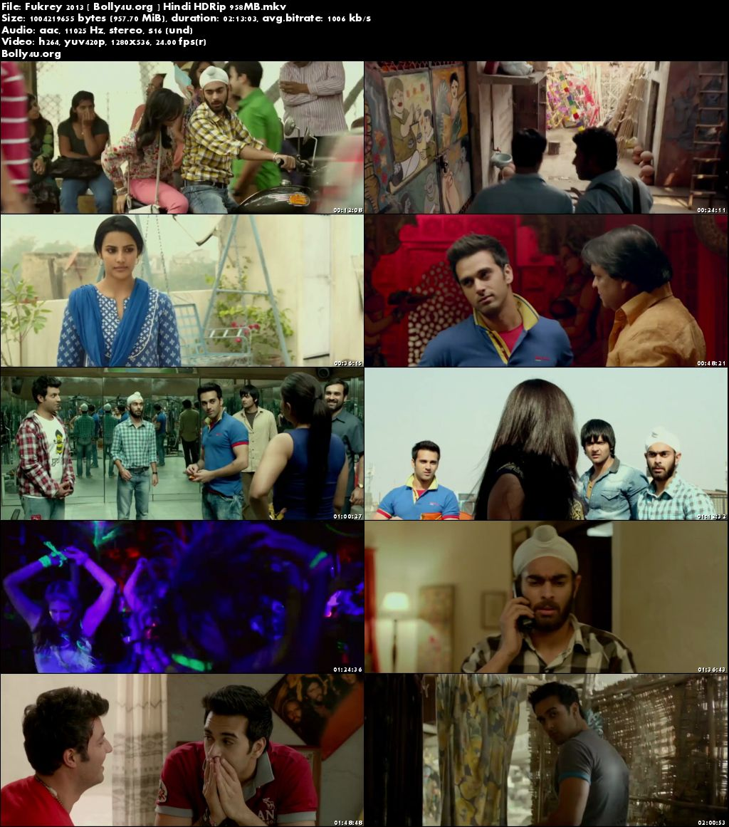 Fukrey 2013 HDRip 350MB Hindi Movie 480p Download