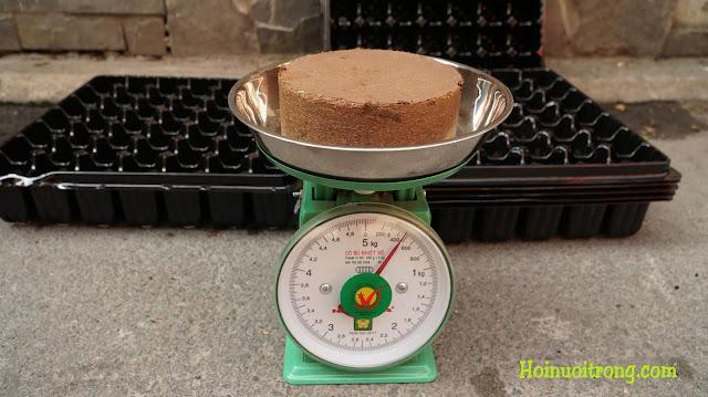Trước khi ngâm nước, trọng lượng 1 bánh nén là gần 0,5 kg