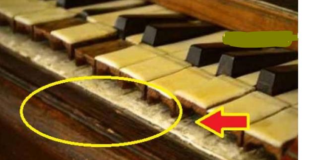 حادث غريب.. هذا ما عثروا عليه داخل بيانو قديم في مدرسة عثروا على مفاجأة صادمة وغير متوقعة على الإطلاق